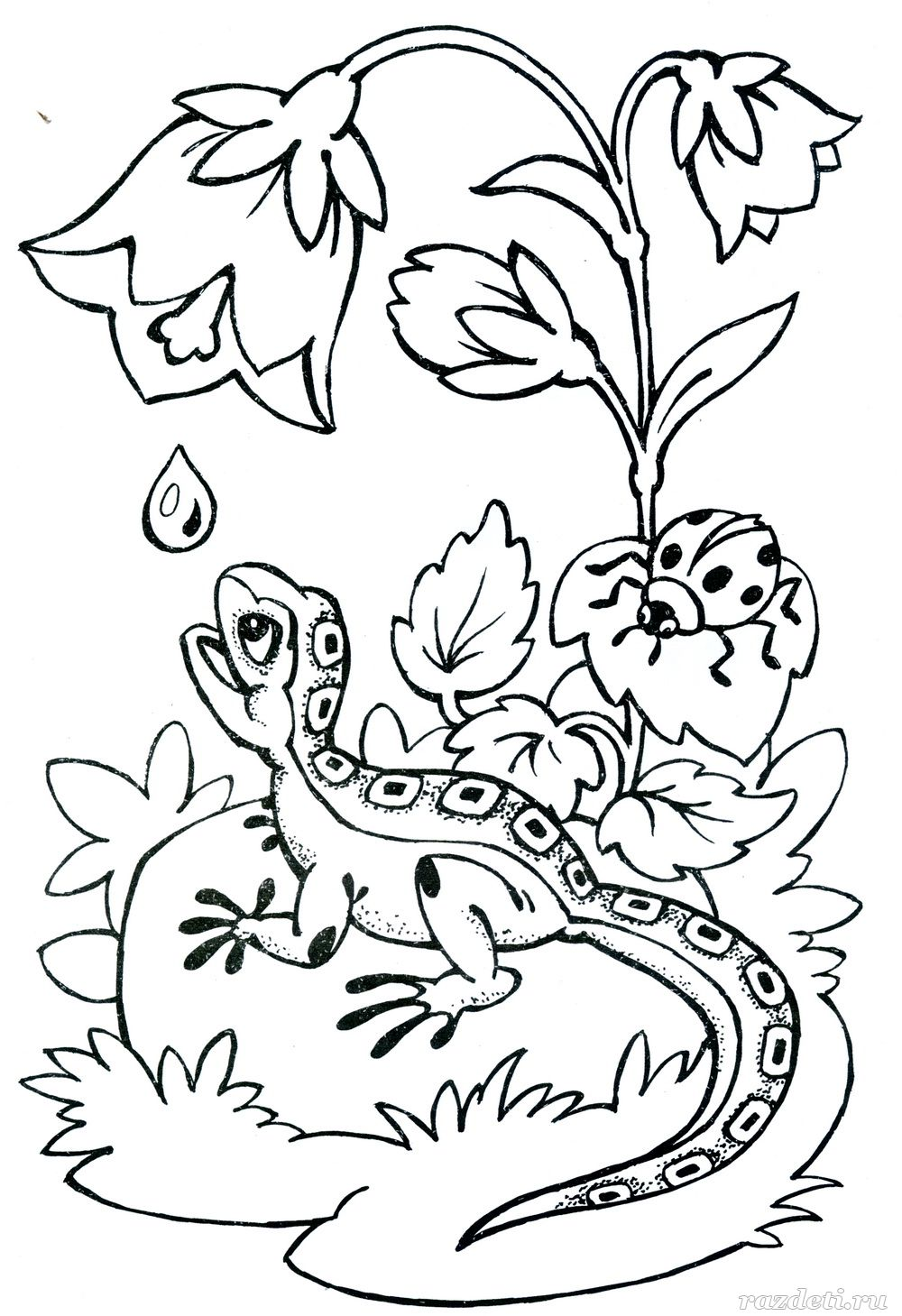Фото лиса для детей