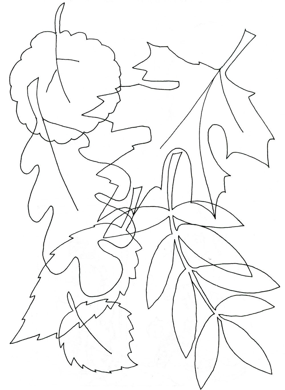 Путаница листья