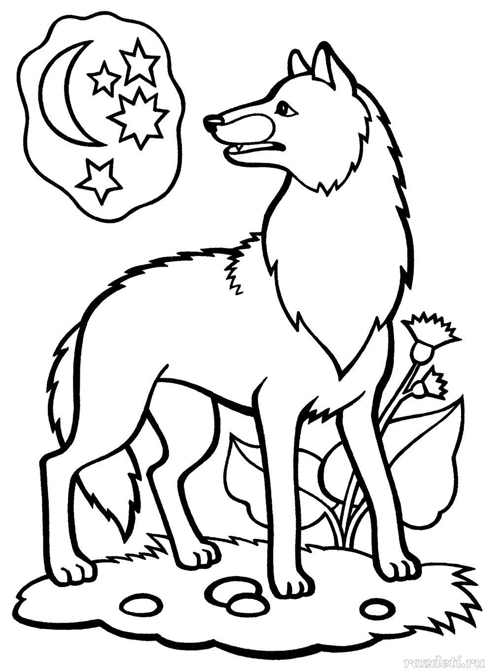 Раскраска волк и леса