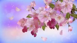 Стихи о весне для детей дошкольного возраста