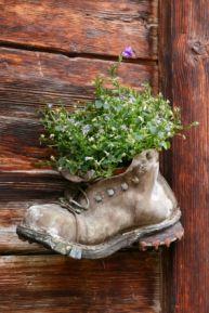 Загадки про сад и огород