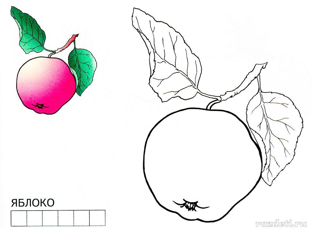 Раскраска Яблоко