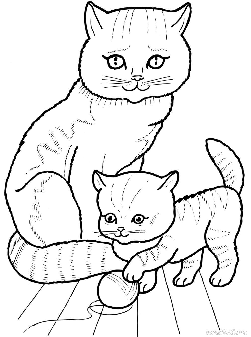Кошка и котёнок. Раскраска для детей