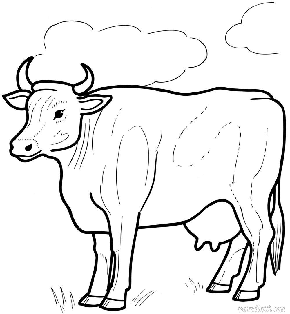 Корова. Раскраска для детей