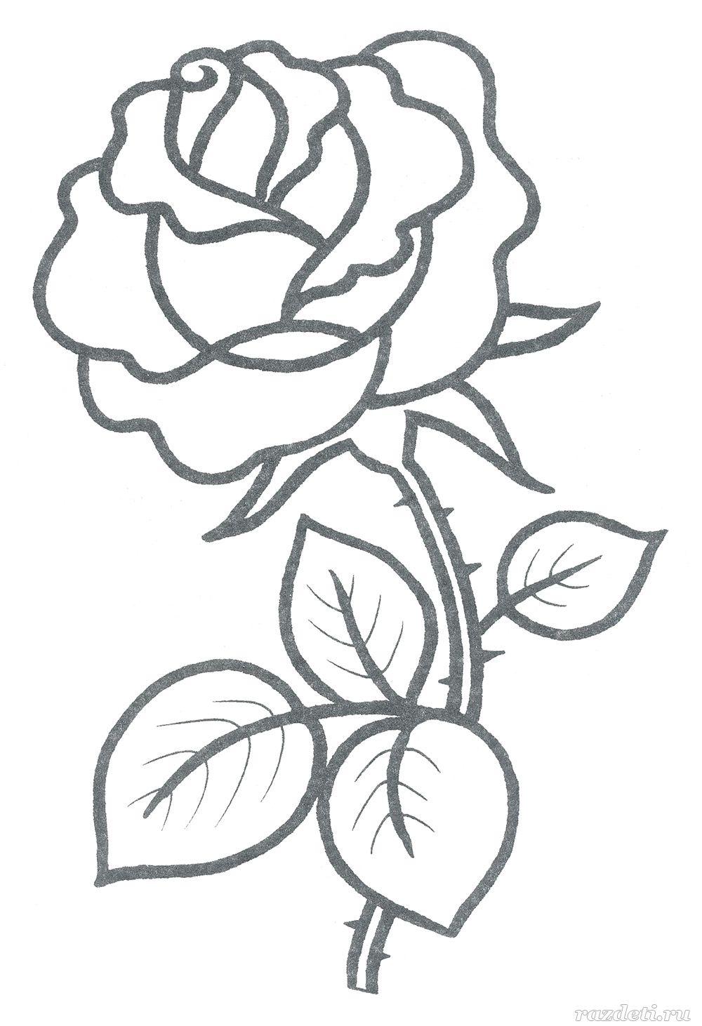 Раскраска для детей 3-4 лет. Роза