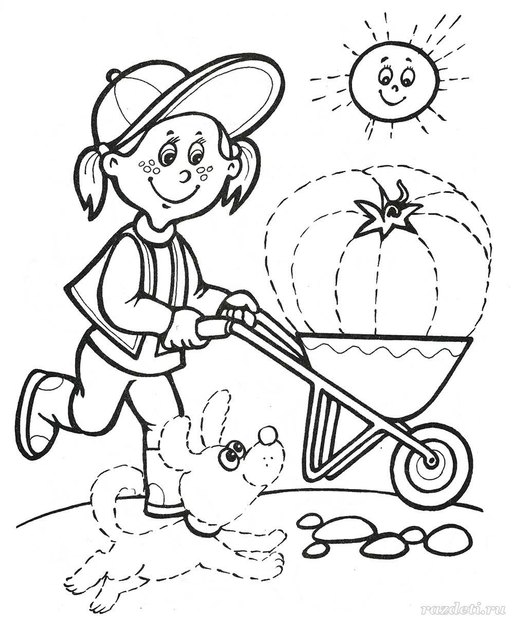 развивающая раскраска для детей 5 7 лет
